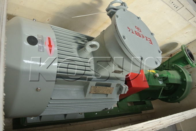 CP68-55 Centrifugal Pump Customized by the Customer